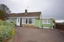 3 bed Detached Bungalow in Mount Avenue, Stone