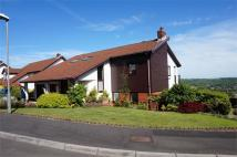 4 bed Detached property for sale in The Paddocks, Caerleon...