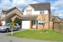 Detached property in Stokes Court, Ponthir...