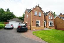 Detached home in The Glen, Langstone...
