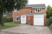4 bed house to rent in Alexandra Road, Kingsdown