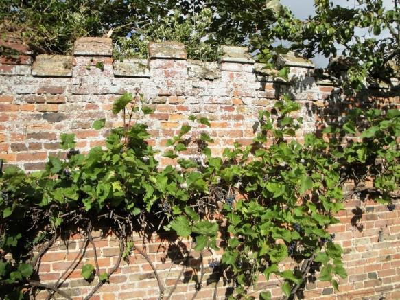 Castellated wall