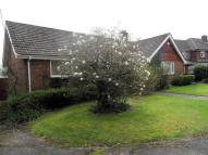 Detached Bungalow for sale in Mount Pleasant, Tadley