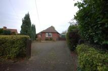 Detached Bungalow for sale in Pack Lane, Kempshott