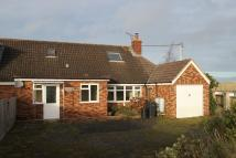 Detached Bungalow in Cheriton Bishop, Exeter