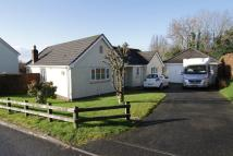 Detached Bungalow in Westcots Drive, Winkleigh