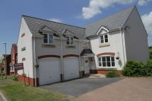 Detached property in Dulings Meadow...