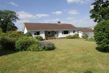 Detached Bungalow in Shobrooke