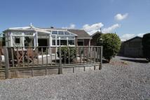 Detached Bungalow for sale in Stoke Canon