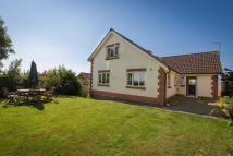 5 bed Detached property for sale in Golden Joy, Crediton