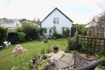 Cottage to rent in Tedburn St Mary
