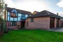 Detached property for sale in Chestnut Close, Crediton