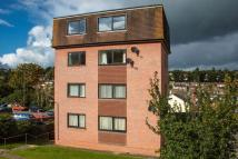1 bed Flat in Town View, Crediton