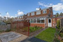 Hedgerow Close semi detached property to rent