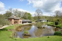 5 bed Detached house in Netherby, Longtown...