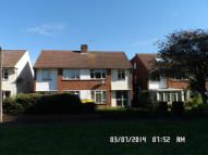 3 bed property to rent in Greenacre, Windsor