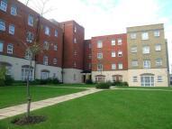 2 bedroom Flat to rent in Cippenham