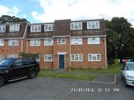 2 bedroom Flat in Castleview Catchment
