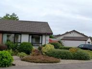 Brontonfield semi detached property to rent