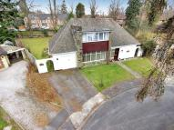 Detached house in Blackwater Lane...