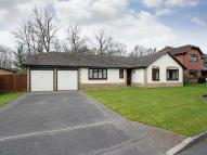 Detached Bungalow for sale in Salehurst Road, Worth...