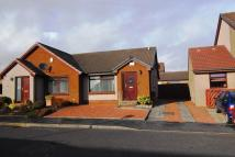 1 bedroom Semi-Detached Bungalow for sale in Cairns Terrace...