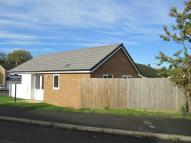 2 bed Detached Bungalow in Ashby Drive, CRICK...