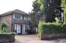 Detached home in Broad Lane, Hampton, TW12