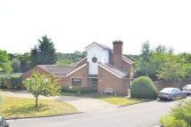 Detached home for sale in Park Close, Hampton