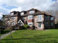2 bed Flat in Chestnut Avenue