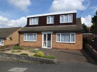 4 bed Detached Bungalow to rent in Charnwood Avenue, Belper...