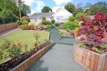 Detached Bungalow in St Austell, Cornwall...