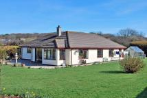 Detached Bungalow for sale in Perran Downs...