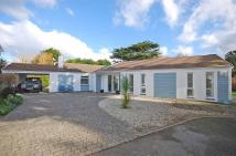 4 bed Detached Bungalow in Constantine Bay...