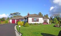 4 bed Detached Bungalow in St Tudy, Nr. Wadebridge...