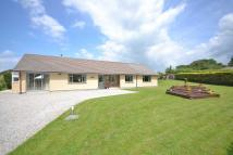 Detached Bungalow for sale in St Tudy, Nr. Bodmin...
