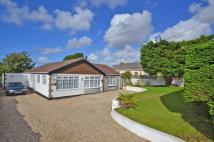 4 bed Detached Bungalow for sale in Connor Downs, Hayle...