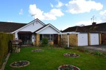 3 bedroom Semi-Detached Bungalow for sale in Edwards Close, Rainham...