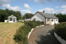 Detached Bungalow in LLANEILIAN, Amlwch