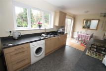 House Share in Salcombe Drive, Glenfield