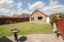 Detached Bungalow for sale in Whinstone Drive...