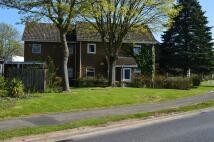 1 bedroom Ground Flat to rent in Coris Close...