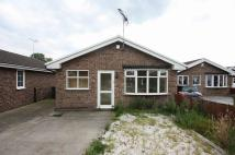 Willow Grove Bungalow to rent