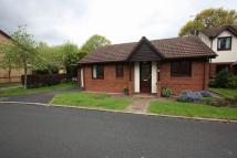 2 bed Bungalow to rent in Vine Road, Whitby...