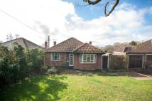 Bungalow for sale in Merle Common Road, Oxted...