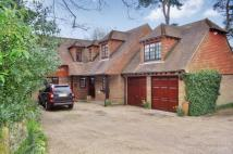 4 bedroom Detached home to rent in High Street, RH8