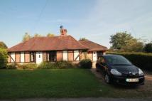 Bungalow to rent in Itchingwood Common Road...