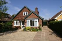 Detached Bungalow in  Chequers Lane...