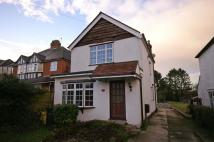 Detached property to rent in 10 Trees Road...