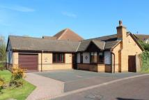 3 bed Bungalow for sale in Rothbury Close...